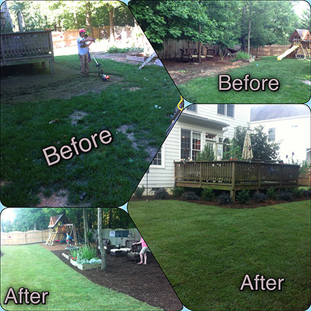sod-before-after-3