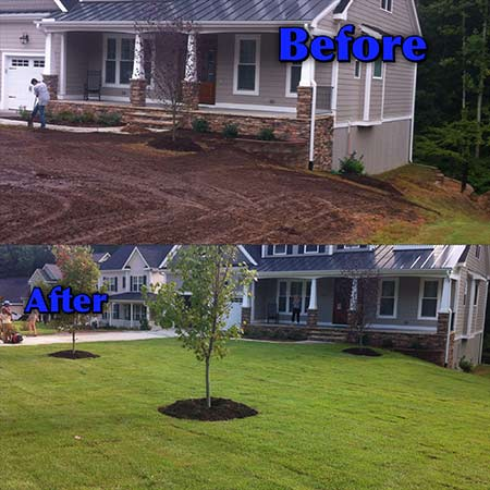 sod-before-after-5